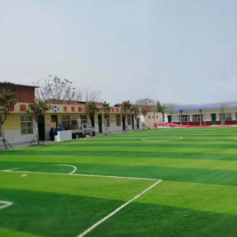 学校运动足球场草坪