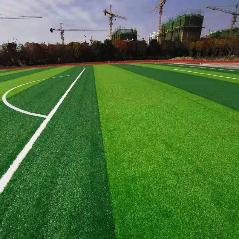 学校操场人造草坪案例